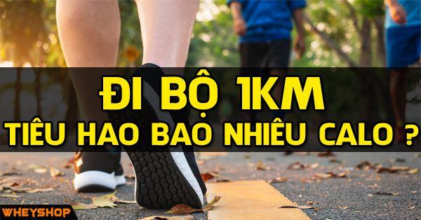 Giải đáp câu hỏi đi bộ và chạy bộ 1km tiêu hao bao nhiêu calo?