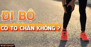 di bo co to chan khong wheyshop vn_compressed