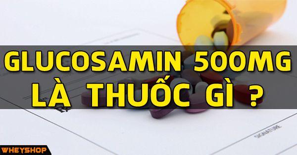 glucosamin 500mg la thuoc gi wheyshop vn