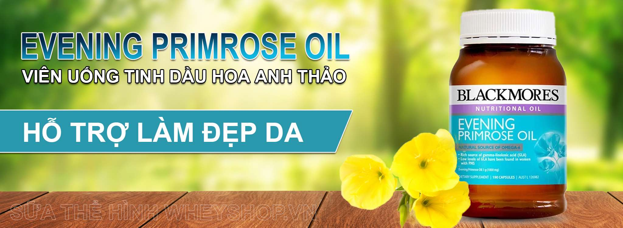Evening Primrose Oil gia re ha noi tphcm