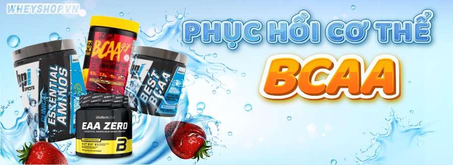 BCAA được nhập khẩu chính hãng, chuyên dành cho người tập gym. thể hình. Danh sách sản phẩm BCAA chính hãng, giá rẻ tại Hà Nội TpHCM