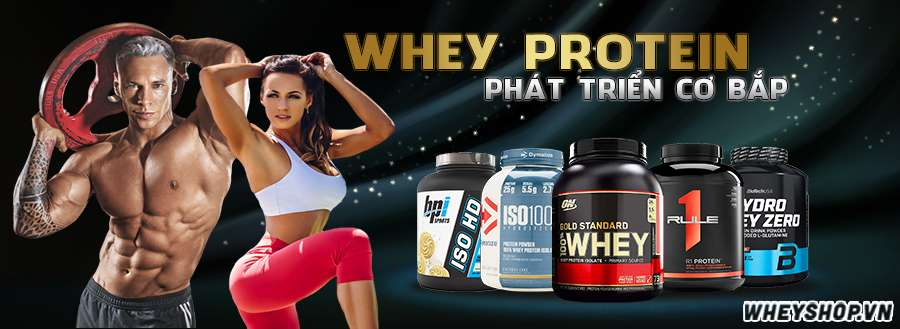 Whey Protein là sữa tăng cơ giảm mỡ, thực chất là đạm, là 1 trong 2 loại protein chính trong sữa, chiếm khoảng 20% tỷ lệ trong sữa, Whey Protein tại Wheyshop là sản phẩm chính hãng có giá tốt tại Hà Nội, TPHCM
