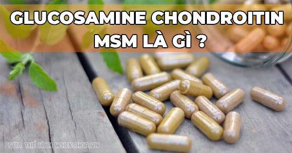 Glucosamine chondroitin msm loi ich va cach su dung