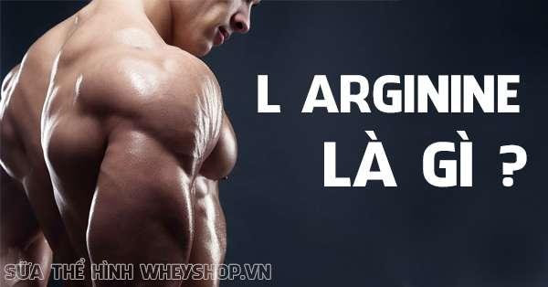 L Arginine la gi vai tro cua L Arginine doi voi gym 600x314 (1)