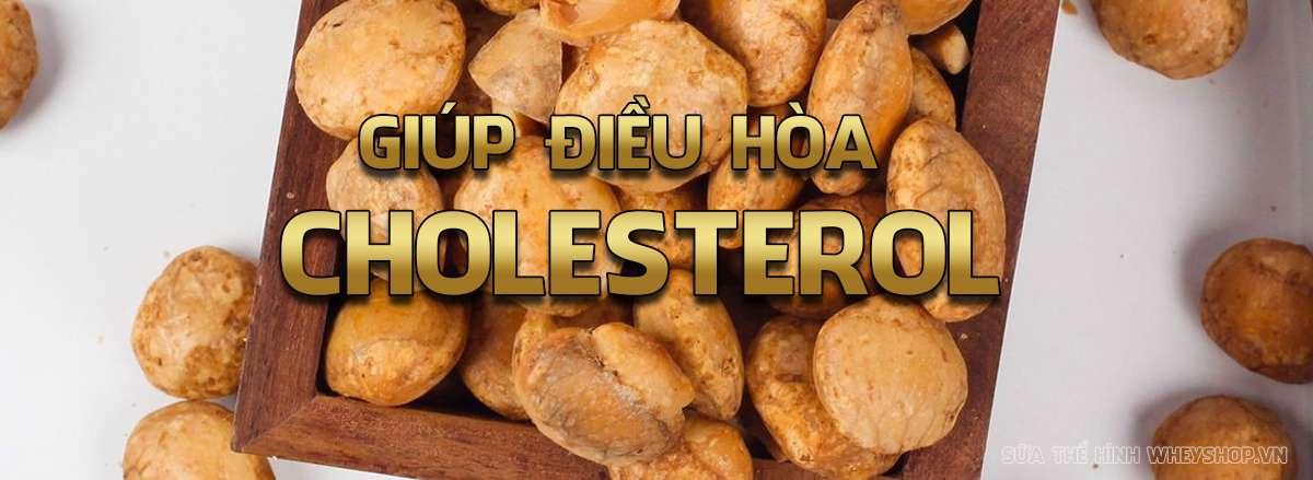 hat sa chi la gi loi ich cua hat sa chi doi voi suc khoe dieu hoa Cholesterol