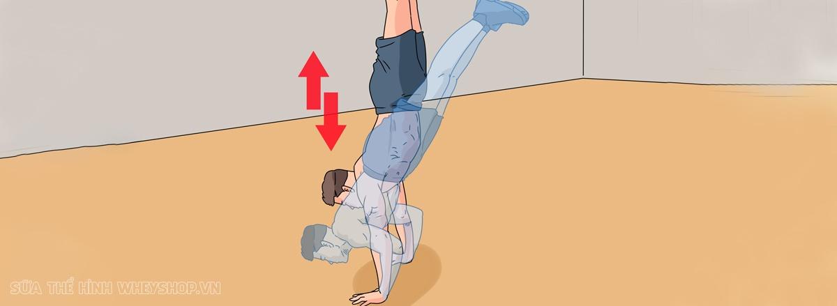 Chống đẩy Push Up là bài tập đơn giản nhưng hiệu quả hàng đầu cho cơ ngực, vay và tay phát triển. Push Up dễ dàng thực hiện, không cần dụng cụ, hiệu quả nhanh