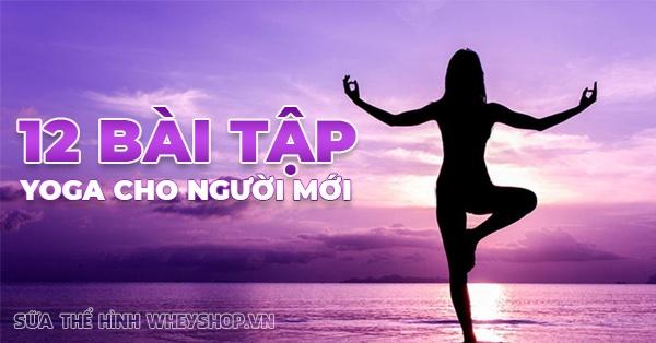 12 bai tap yoga cho nguoi moi rat can thiet 600x314 1