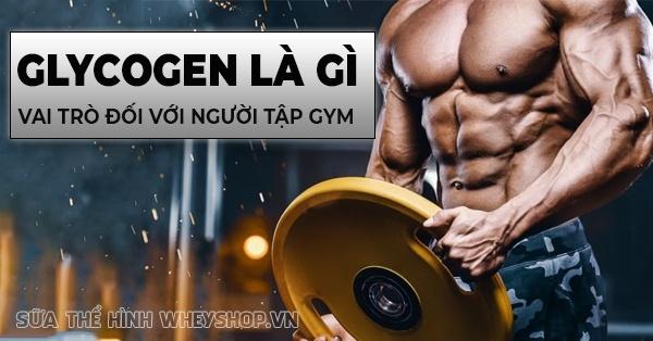 Glycogen là gì ? Tìm hiểu lợi ích và vai trò của glycogen với người tập gym, thể hình qua bài viết sau cùng WheyShop nhé ...