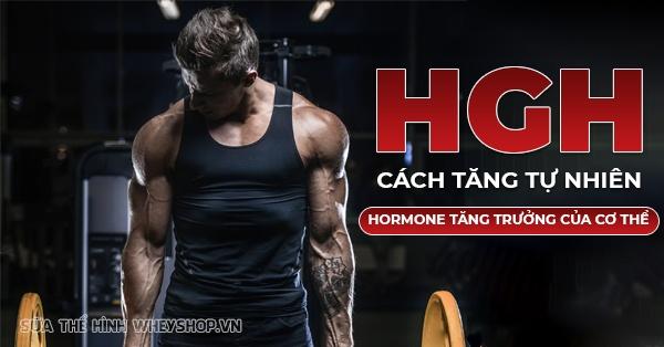 Hormone tăng trưởng ở người HGH là gì ? Hãy cùng WheyShop tìm hiểu vai trò của HGH với người tập gym, thể hình và cách tăng HGH tự nhiên, đơn giản hiệu quả...