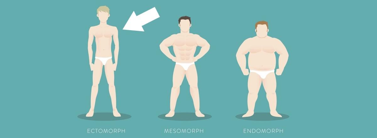 Cùng WheyShop tìm hiểu cách tăng cân cho tạng người Ectomorph siêu gầy và khó hấp thu dinh dưỡng qua bài viết chi tiết ...