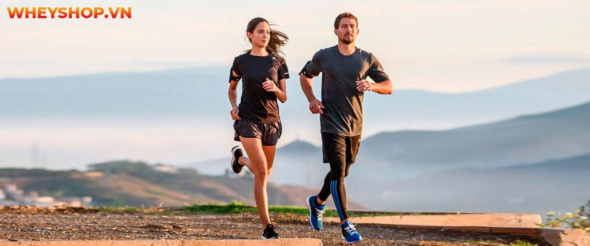 Cùng WheyShop tìm hiểu lý do tại sao chạy bộ bị đau bụng cùng 5 cách khắc phục tình trang chạy bộ bị đau bụng đơn giản, hiệu quả qua...