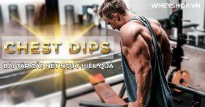 Chest Dips hay xà kép là gì ? Bạn đã hiểu rõ về lợi ích tuyệt vời và cách tập Chest Dips cắt nét cơ ngực hiệu quả chưa? Hãy cùng tìm hiểu chi tiết qua bài viết