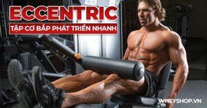 Bạn đã từng nghe qua về Eccentric chưa? Hãy cùng tìm hiểu Eccentric - phương pháp tập luyện tăng cơ hiệu quả hàng đầu hiện nay được vận động viên sử dụng ...