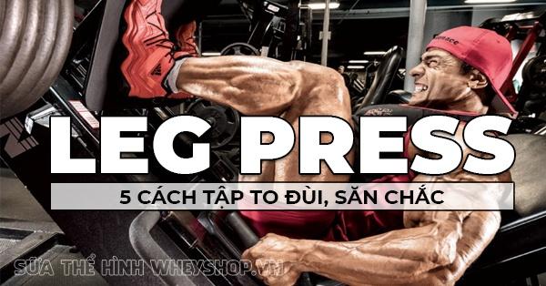 Leg Press va 5 cach tap dui to san chac chua ai biet 600x314 1