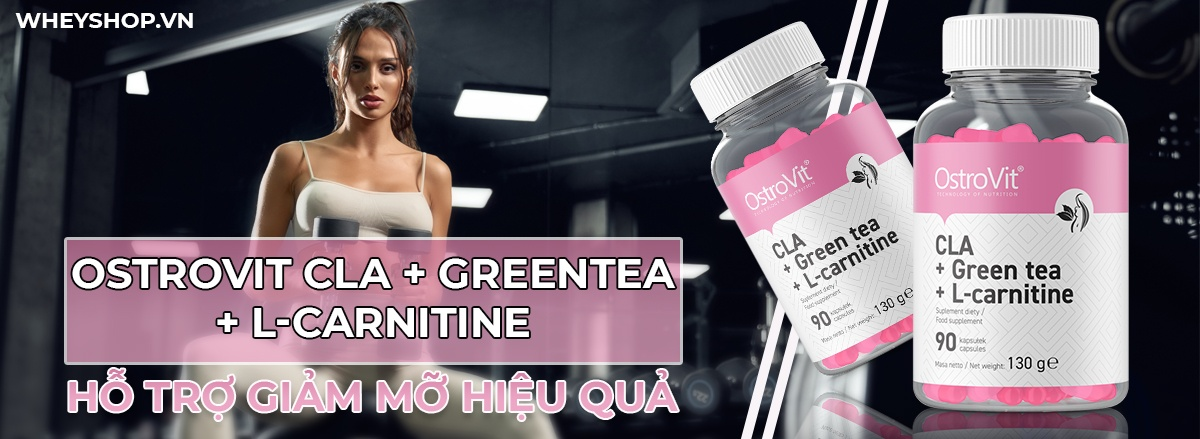 Ostrovit CLA + Greentea + L-Carnitine là sản phẩm hỗ trợ giảm cân chuyển hóa mỡ thừa với sự kết hợp 3 trong 1, tăng cường trao đổi chất, giảm mỡ nhanh, hiệu quả