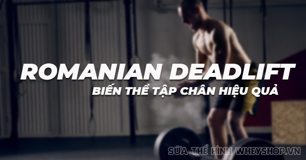 Romanian Deadlift la gi bien the tap chan hieu qua cua Deadlift 600x314 1