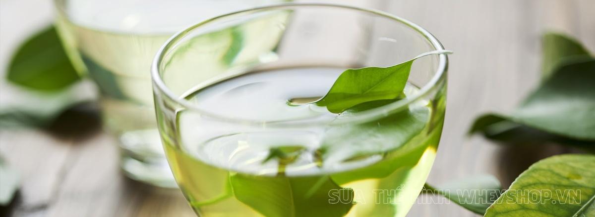 Cùng tìm hiểu ngay lợi ích của trà xanh đối với cơ thể có thể bạn chưa biết, trà xanh giảm cân có tốt không , tìm hiểu chi tiết qua bài viết sau đây...