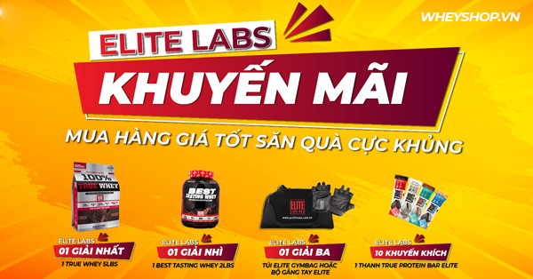 ELITE LABS ACTIVATION THÁNG 11/2020