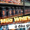 Whey Protein là thực phẩm bổ sung hàng đầu cho người tập gym tăng cơ bắp. Vậy mua whey protein ở đâu giá rẻ uy tín tại TpHCM, tìm hiểu ngay qua bài viết ...