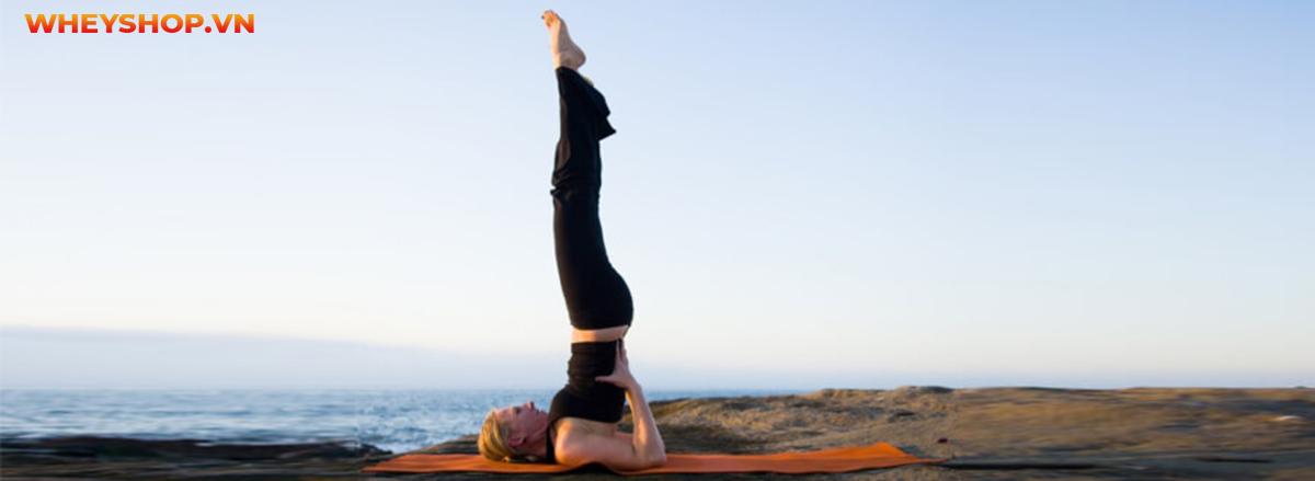 Tập yoga có tăng chiều cao không ? Tập thế nào để phát triển chiều hiệu quả ?