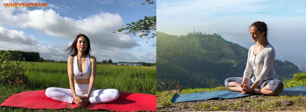 """ashtanga yoga là gì ?là thắc mắc của rất nhiều bạn đọc . Trong bài viết này Wheyshop sẽ giúp bạn đọc hiểu rõ hơn về hình thức tập luyện yoga """"hot hit"""" này nhé."""