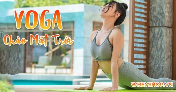 Bài tập Yoga chào mặt trời là chuỗi 12 động tác được rất nhiều người yêu thích khi tập luyện bộ môn yoga.