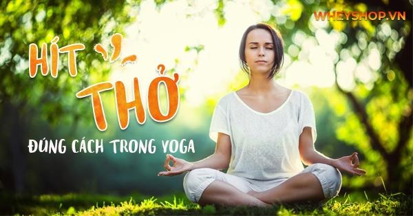 """""""Cách hít thở trong yoga"""" là một kỹ thật cơ bản mà tất cả những người tham gia tập luyện cần nắm rõ và thực hiện đúng cách, để phát huy tác dụng của bài tập."""