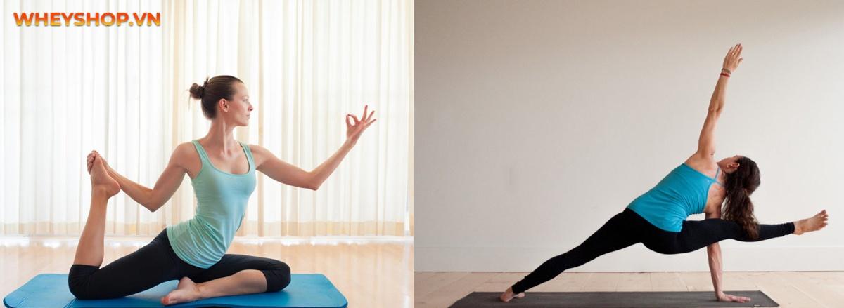 1 buổi tập yoga đốt bao nhiêu calo là câu hỏi của rất nhiều các bạn mới tập Yoga. Vậy, hãy tìm hiểu ngay nội dung bài viết, nó sẽ giúp bạn trả lời câu hỏi này.