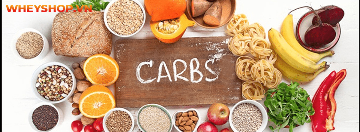 Carb là gì? Tìm hiểu chi tiết về carb cùng 15 sự thật về carb mà bạn chưa từng biết tới qua bài viết sau đây cùng WheyShop nhé ....