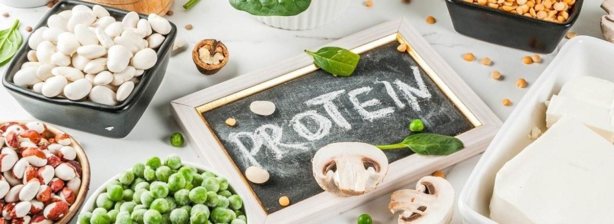 Protein thực vật là gì? Protein thực vật thay thế được protein động vật không? Tham khảo top 50 thực phẩm giàu protein thực vật tốt nhất