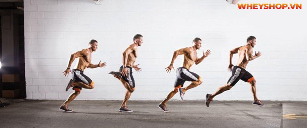 Chạy bộ giảm mỡ bụng có hiệu quả không? Cùng WheyShop tham khảo bài viết hướng dẫn chạy bộ giảm mỡ bụng đúng cách ngay nhé...