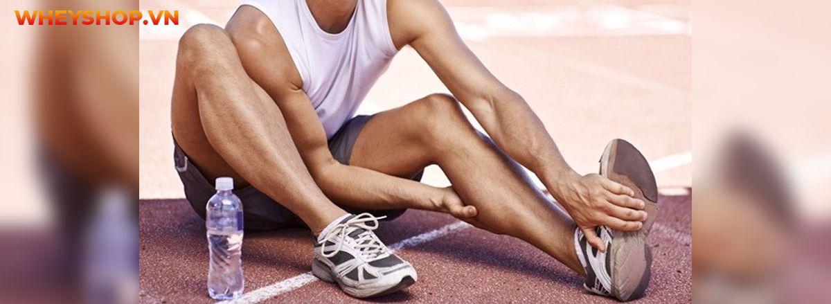 Chắc hẳn không dưới 1 lần bạn chạy bộ bị đau bắp chân, vậy nguyên nhân là gì? Hãy cùng WheyShop tìm hiểu chi tiết qua bài viết sau và cách khắc phục ngay nhé...