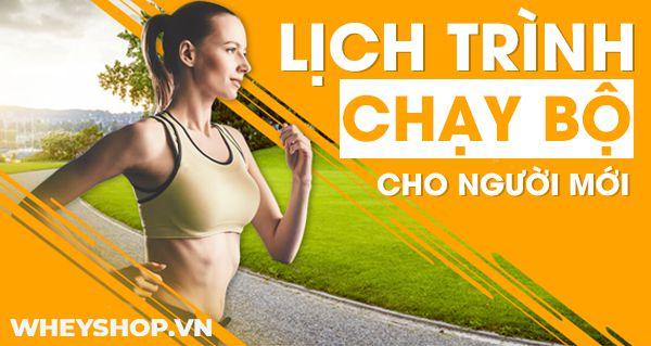 Nếu bạn là người mới tập luyện chạy bộ thì tham khảo ngay lịch chạy bộ cho người mới bắt đầu tập đầy đủ chi tiết nhất...