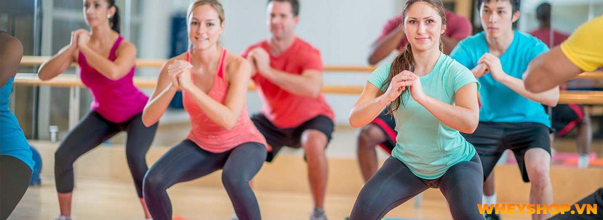 Nếu bạn đang băn khoăn về vấn đề chạy bộ có làm mất cơ bắp không thì hãy cùng WheyShop tìm hiểu chi tiết qua bài viết ngay sau đây nhé....