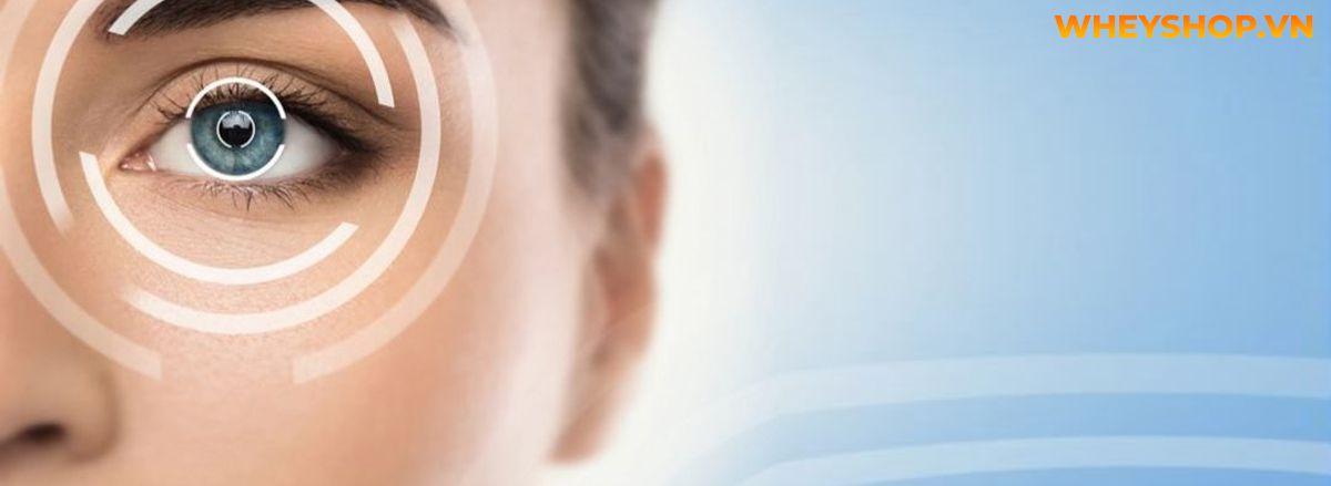 Hãy cùng WheyShop tham khảo và tìm hiểu ngay về 15 lợi ích tuyệt vời đối với sức khỏe mà Ớt chuông mang lại qua bài viết sau đây....