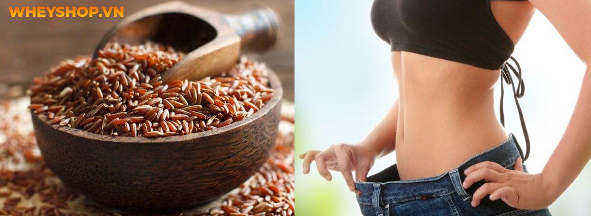 Nếu bạn đang băn khoăn tìm cách ăn gạo lứt giảm cân sao cho hiệu quả thì hãy cùng WheyShop điểm qua ngay 10 cách ăn gạo lứt giảm cân qua bài...