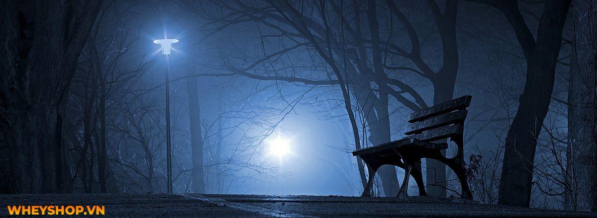 Tháng cô hồn là gì? Cùng WheyShop tìm hiểu về tháng cô hồn và những điều TUYỆT ĐỐI KHÔNG ĐƯỢC LÀM trong tháng cô hồn nhé...
