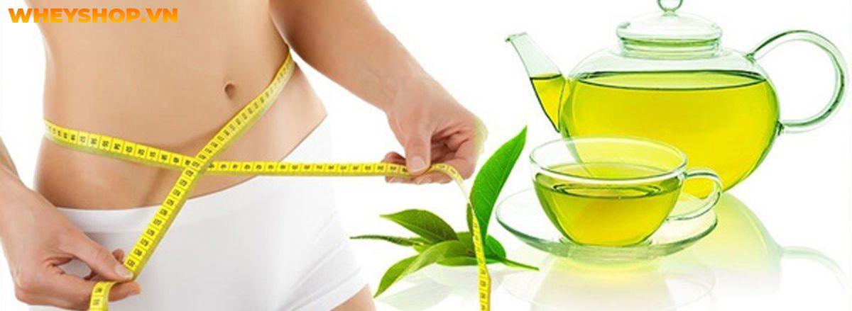 Trà xanh giảm cân hiệu quả không? Cùng WheyShop tìm hiểu ngay cách giảm cân với trà xanh hiệu quả qua bài viết....