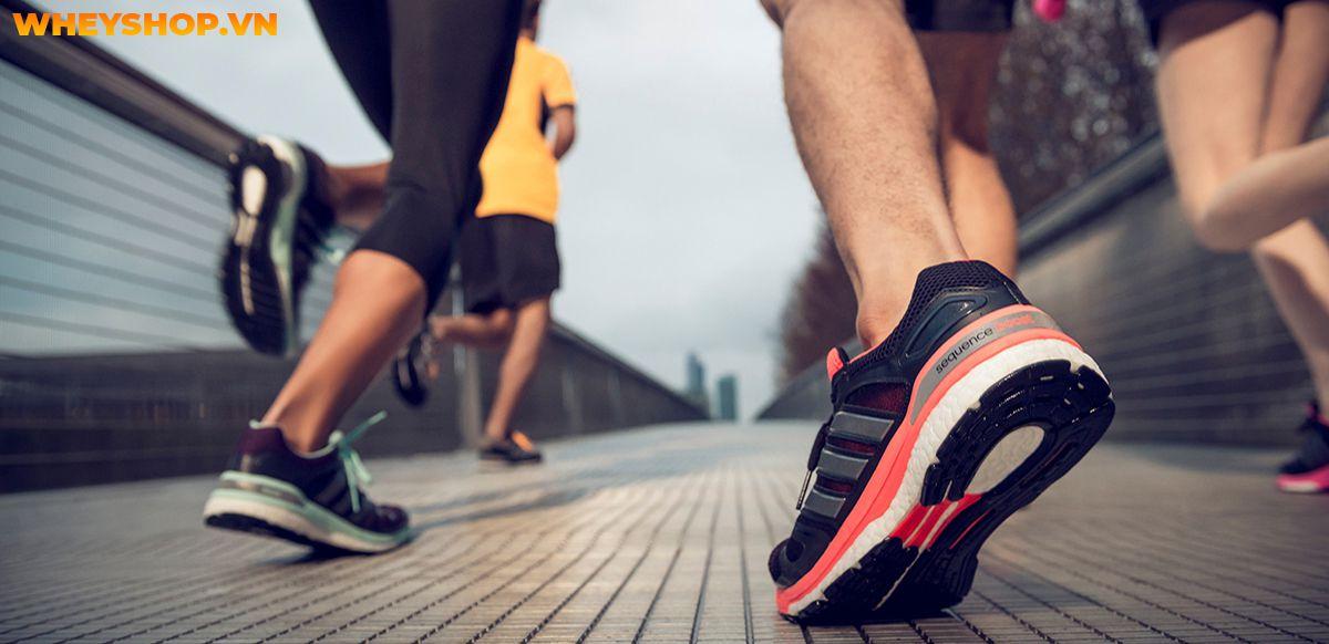 Nếu bạn đang băn khoăn trong việc tìm kiếm giày chạy bộ adidas phù hợp thì hãy cùng WheyShop điểm qua top 15 giày chạy bộ adidas trong bài..