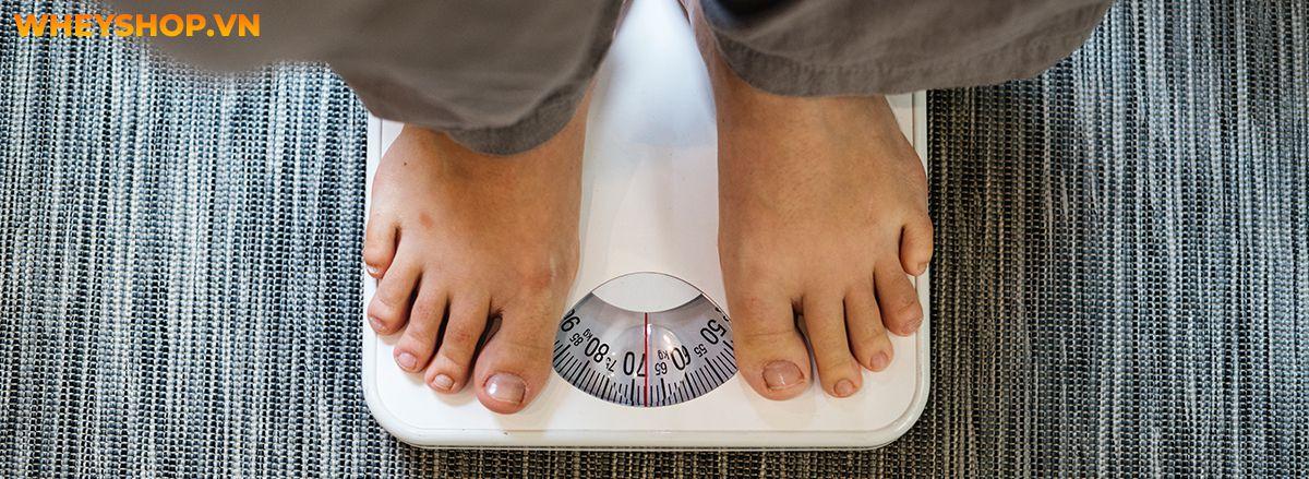 Hạt dẻ là một thực phẩm quen thuộc của chúng ta. Vậy bạn đã hiểu rõ những lợi ích sức khỏe của hạt dẻ mang lại chưa? Cùng WheyShop tham khảo qua bài viết...