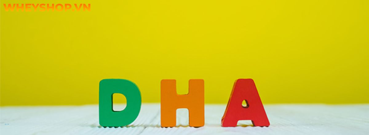 DHA là gì? Vai trò của DHA với sức khỏe và người tập thể hình là gì? Hãy cùng WheyShop tìm hiểu chi tiết nội dung qua bài viết sau đây nhé...