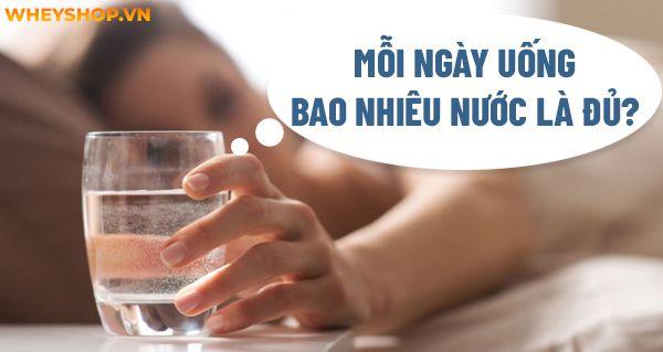 Uống nước nghe có vẻ đơn giản tuy nhiên bạn đã biết mỗi ngày cần uống bao nhiêu nước là đủ không? Hãy cùng WheyShop tìm hiểu chi tiết qua bài viết...