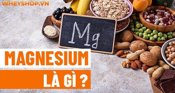 Nếu bạn đang băn khoăn chưa hiểu rõ Magnesium là gì thì hãy cùng WheyShop tìm hiểu lợi ích vai trò của Magnesium với sức khỏe người tập gym, thể hình...