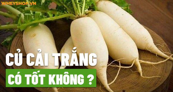 Củ cải trắng là thực phẩm quen thuộc hằng ngày, vậy bạn đã hiểu rõ lợi ích của củ cải trắng chưa? Hãy cùng WheyShop tham khảo chi tiết qua bài..