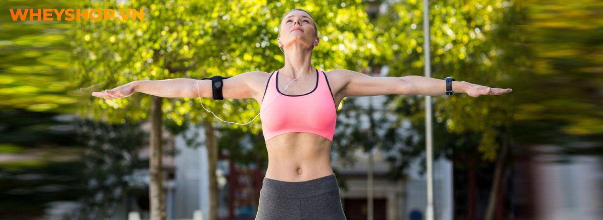 Nếu bạn đang phân vân trong việc tìm kiếm bài tập giảm mỡ bắp tay hiệu quả thì hãy cùng WheyShop điểm qua ngay 15 bài tập trong bài viết...