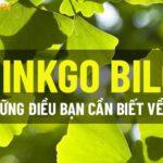 Nếu bạn đang băn khoăn không biết ginkgo biloba là gì thì hãy cùng WheyShop tìm hiểu chi tiết về ginkgo biloba qua bài viết ngay sau đây...