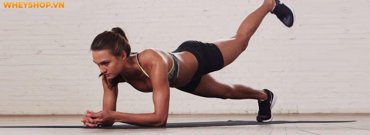 Nếu bạn đang băn khoăn trong việc tìm cách Plank đúng cách, đơn giản và giảm mỡ hiệu quả thì hãy cùng WheyShop điểm qua bài viết...