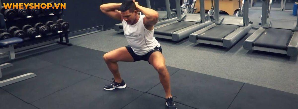 Nếu bạn đang băn khoăn trong việc bắt đầu tập gym nam thì hãy cùng tham khảo cùng WheyShop hướng dẫn tập gym nam cơ bản A-Z ngay nhé..