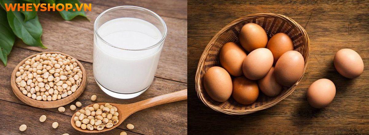 Nếu bạn đang băn khoăn về việc uống sữa đậu nành có tăng vòng 1 không thì hãy cùng WheyShop tìm hiểu chi tiết qua bài viết ngay sau đây nhé...