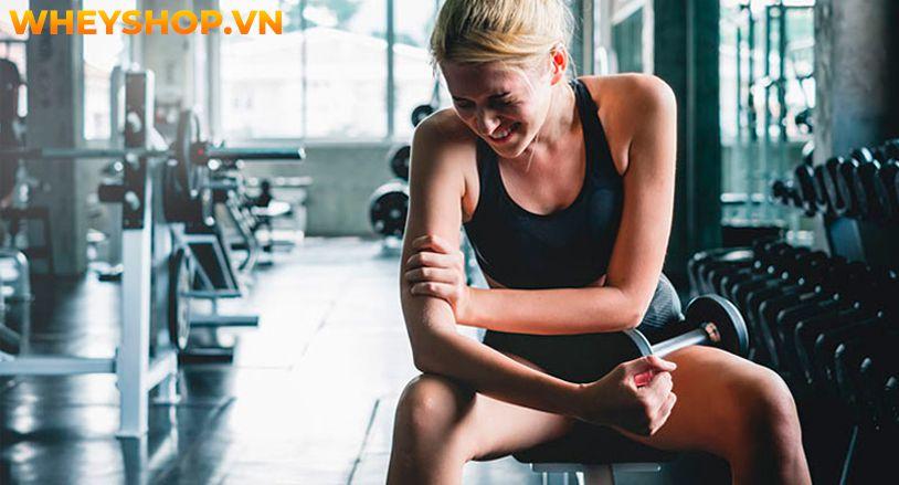 Nếu bạn đang loay hoay trong việc tìm cách giảm bắp tay to thì hãy cùng WheyShop điểm qua bài viết về nguyên nhân và cách khắc phục bắp tay to...